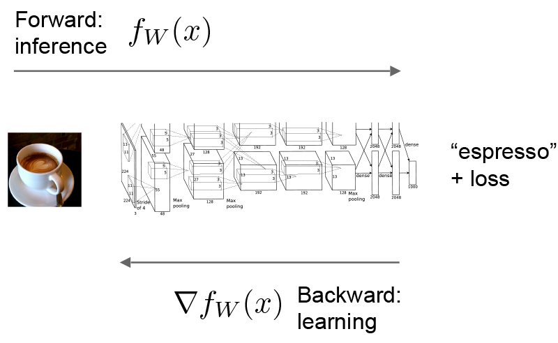 Caffe Forward And Backward For Inference And Learning